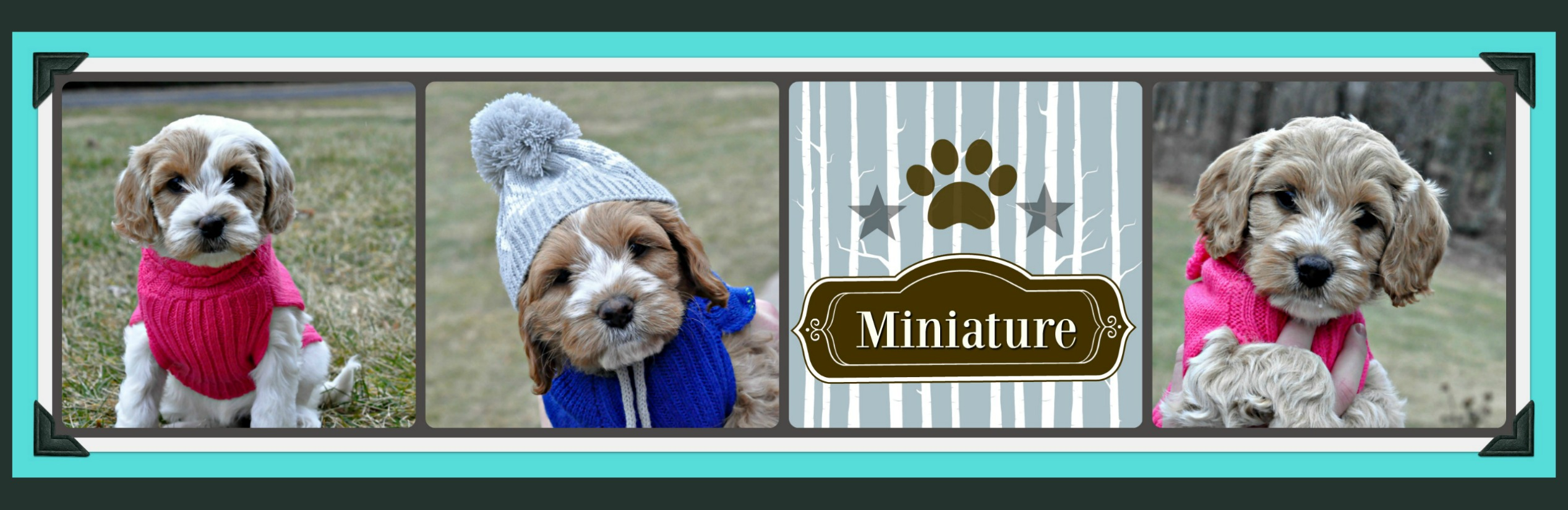 Miniature-2