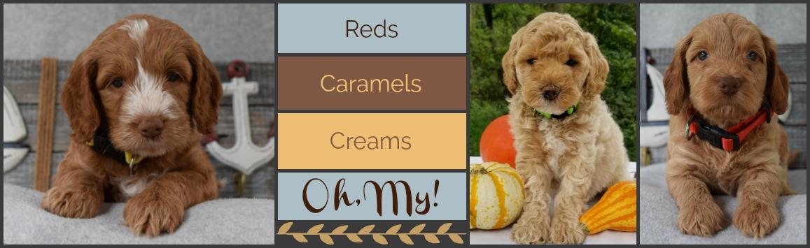 Reds-Caramels-Creams